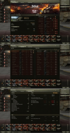 Defeat!
